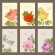 Set of vintage vector vertical label with flowering garden roses. — Stock Vector