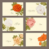 Set of Vintage Floral horizontal business cards. — Stock Vector