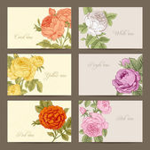 Set of vintage vector horizontal business cards with flowering garden roses. — Stock Vector