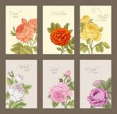 Set of vintage vector vertical label with flowering garden roses. — Stock Vector