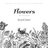 Summer floral vintage vector background. — Stock Vector