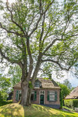 Historic cottage in Dwarsgracht - Giethoorn Holland — Stock Photo