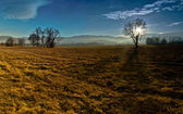 Landscape — Stockfoto
