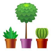 Pokojové rostliny — Stock vektor