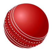 Cricket ball — Stock Vector