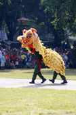 Indonesian National Armed Forces are doing a lion dance attracti — Stock Photo