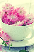 Bouquet of sakura blossoms — Stockfoto
