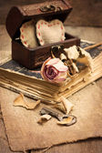 Dry rose, old book — Stockfoto