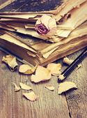 Dry rose and old books — Stock Photo