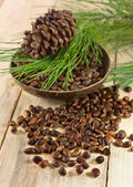 Cedar nuts with pine cones — Stock Photo