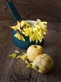 Viejas manzanas — Foto de Stock