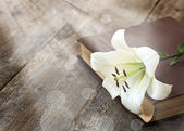 White lily on the book — Stock Photo