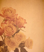 Bouquet of roses — Photo