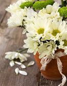 Bouquet of white and green chrysanthemums — Stock Photo