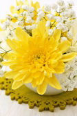 Yellow chrysanthemum — Stock fotografie