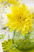 Yellow chrysanthemum in a glass vase — Stok fotoğraf