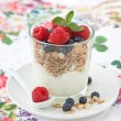 Breakfast with muesli — Stock Photo #39964609