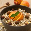 Muesli with fruit and nuts — Stock Photo #39964943