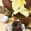 Stock Photo: Puer