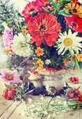 Autumn flowers — Стоковое фото