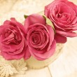 Roses (vintage) — Stock Photo #50204189