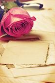 Rose (vintage) — Stock Photo