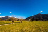 Church in the meadows of Alps — Stock Photo