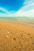 Summer morning on the beach — Stock Photo