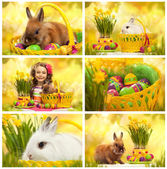 Collage with photos of easter — Stock Photo