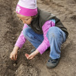 Stock Photo: Girl seeding
