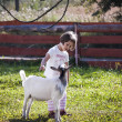 Stroking goat 2 — Stockfoto #39204585