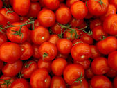 Rote Tomaten — Stock Photo
