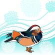Mandarin duck vector illustration — Stock Vector