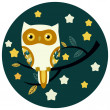 Cute owl vector illustration. — Stock Vector