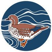 Mandarin duck vector illustration — Stock Vector