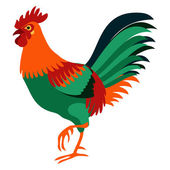 Cock isolated vector illustration. — Stock Vector