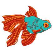 金鱼分离特征矢量图. — 图库矢量图片
