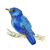 Watercolor-style vector illustration of small blue bird — Stock Vector