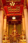 Buda — Stok fotoğraf