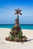 Plaj tropikal noel ağacı — Stok fotoğraf