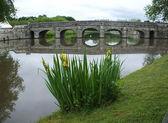 Bridge over the lake — Stockfoto