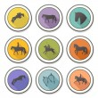 Set of vector icons with horse equipment — Stock Vector #40299755