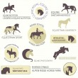 Set of vector icons with horse equipment — Stock Vector #40446889