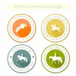Set of vector icons with horse equipment — Stock Vector