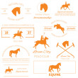 Set of perfect high quality horse labels for different equestria — Stock Vector