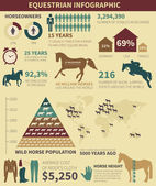 Equestrian infographic  — Stock Vector
