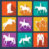 Set of equine vector icons  — Stock Vector