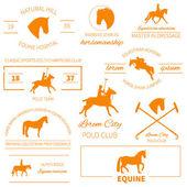 Zestaw etykiet konia — Wektor stockowy