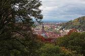 德国海德尔堡 — 图库照片