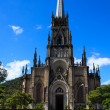 Cathedral of Saint Peter of Alcântara in Petrópolis, Brazil — Stock Photo